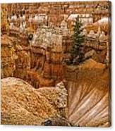 Bryce Zion Landscape Canvas Print