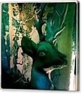 Buck A Deer Canvas Print