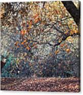 Buck And Fall Foliage Canvas Print