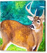 Buck Deer Canvas Print