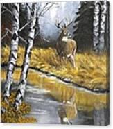Buck Reflection Canvas Print