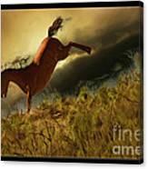 Bucking Horse Canvas Print