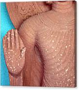 Buddha Carved Stone Statue With Halo Canvas Print