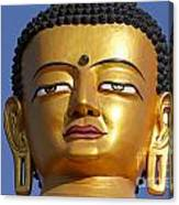 Buddha Statue At The Buddha Park In Kathmandu Nepal Canvas Print