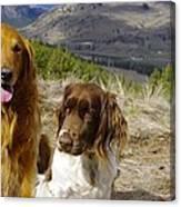 Budds On A Hike Canvas Print