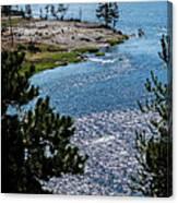 Buffs On River Canvas Print