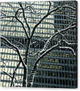Building Reflection And Tree Canvas Print