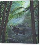 Bull Moose Pond Canvas Print