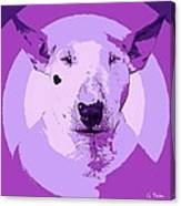 Bull Terrier Graphic 5 Canvas Print