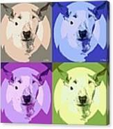 Bull Terrier Pop Art Canvas Print