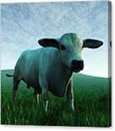 Bull... Canvas Print