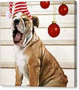 Holiday Bulldog Puppy  Canvas Print