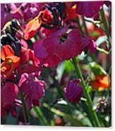 Bumble Bee Among The Wallflowers IIi Canvas Print
