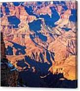 Bumpy Ride Canvas Print