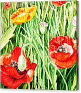Bunch Of Poppies IIi Canvas Print