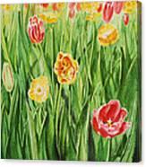 Bunch Of Tulips II Canvas Print