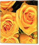 Bunch Of Yellow Roses Canvas Print