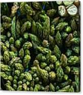 Bunches Of Asparagus On Display At The Farmers Market Canvas Print