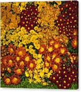 Bunches Of Yellow Copper Orange Red Maroon - Hot Autumn Abundance Canvas Print
