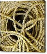 Bundle Of Old Straw Rope Canvas Print