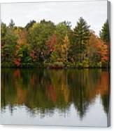 Bunganut Lake Foliage 4 Canvas Print