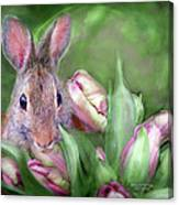 Bunny In The Tulips Canvas Print