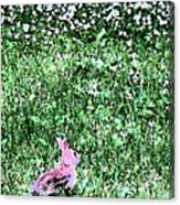 Bunny Rabbit Digital Paint Canvas Print
