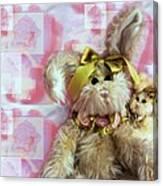 Bunny Rose Canvas Print