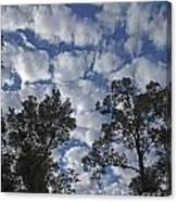 Burden Sky Canvas Print