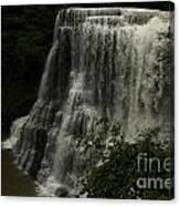 Burgess Falls Tn Canvas Print