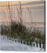 Buried Fence And Sea Oats Sunrise Canvas Print