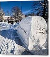 Buried In Snow Canvas Print