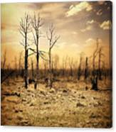 Burned Out Forest Canvas Print