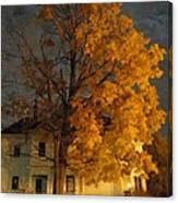 Burning Leaves At Night Canvas Print
