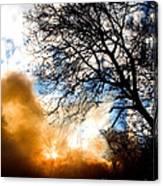 Burning Olive Tree Cuttings Canvas Print