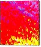 Burnout Canvas Print