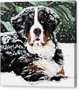 Burrr Canvas Print
