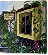 Busch Gardens Scene Canvas Print