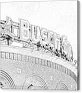 Busch Sta Line Canvas Print