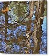 Reflection In Bushkill Falls  Canvas Print