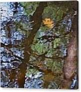 Second  Reflection In Bushkill Falls  Canvas Print