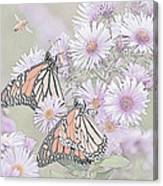 Butterflies And Bee Canvas Print