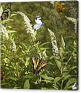 Butterflies In Golden Garden Canvas Print