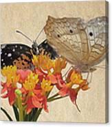 Butterflies Snd Flowers Canvas Print