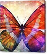 Butterfly 14-1 Canvas Print