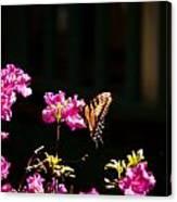 Butterfly And Azalea Canvas Print