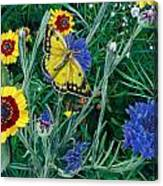 Butterfly And Wildflowers Spring Floral Garden Floral In Green And Yellow - Square Format Image Canvas Print