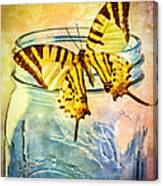 Butterfly Blue Glass Jar Canvas Print