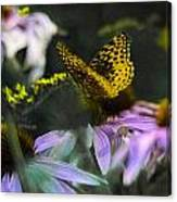 Butterfly Coneflowers 2 Canvas Print