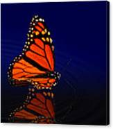 Butterfly Floats Canvas Print